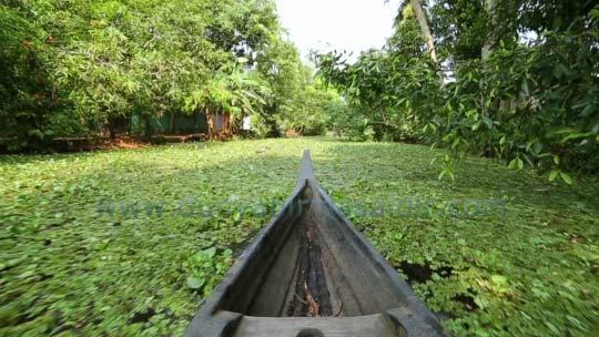 kano allappey kerala backwaters